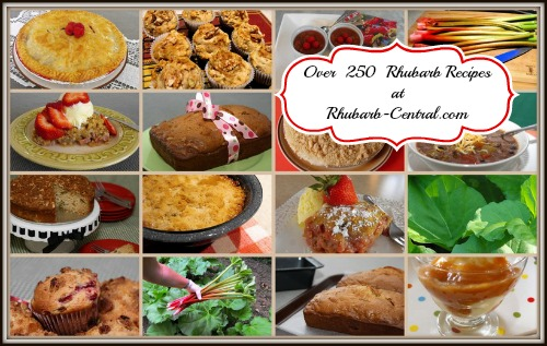 Rhubarb Recipes Image - Homemade Recipes made with rhubarb