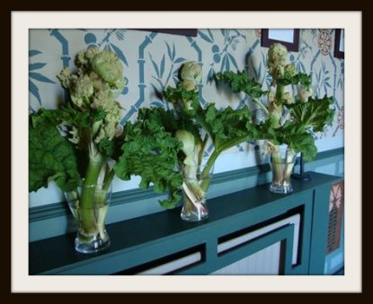 Cut  Rhubarb Flowers in Vases
