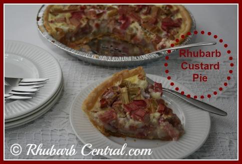 Enjoy Making this Rhubarb Custard Pie Recipe