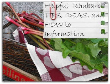 Helpful Rhubarb Tips and How To Info Page