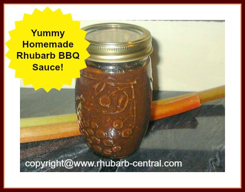 Homemade Rhubarb Barbeque Sauce