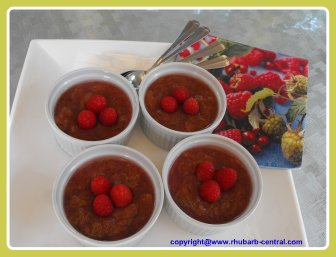 A Rhubarb Raspberry Dessert