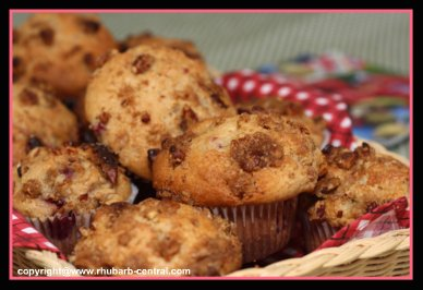 Best Rhubarb Muffins with Berries