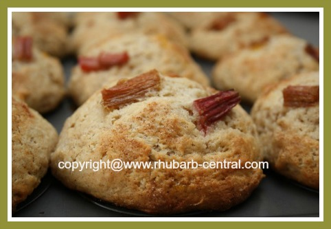 Baked Rhubarb Muffins