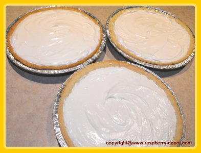 No-Bake Rhubarb Cheesecake