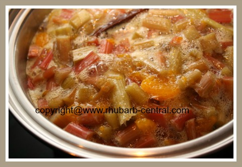 Cooking Rhubarb Tapioca Pudding Dessert