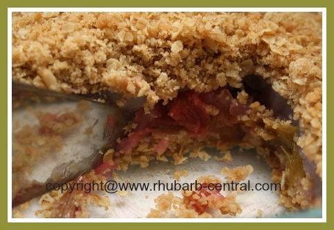 Delicious Rhubarb Cake Recipe Crumble Cake