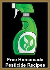 Free Homemade Organic Pesticide Recipes