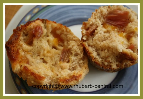 Freshly Baked Rhubarb Muffin