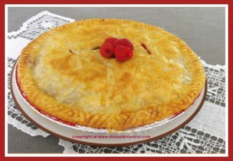 Homemade Rhubarb Pie Recipe Favourite