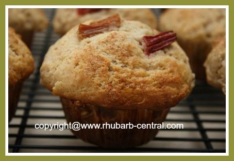 Homemade Muffins with Rhubarb Cinnamon Rhubarb Muffins