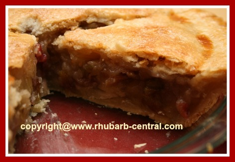 Homemade Rhubarb Pie Citrus Pie Recipe