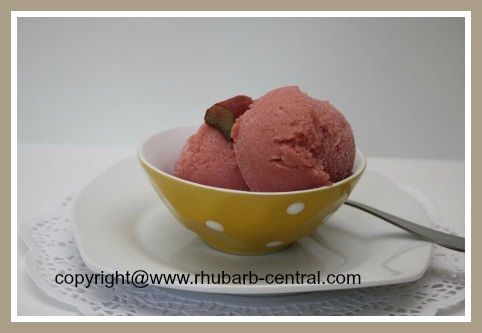 Homemade Rhubarb Sorbet Recipe