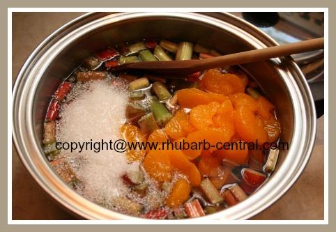 Making Rhubarb Orange Tapioca Dessert