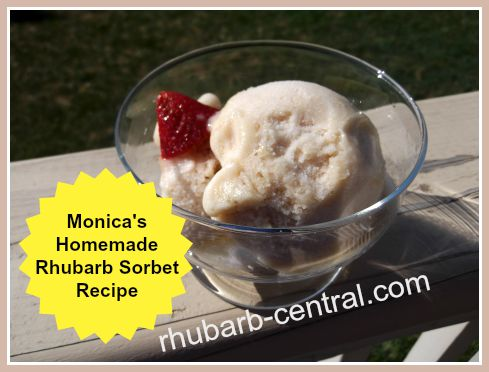 Monica's Homemade Rhubarb Sorbet with Fresh or Frozen Rhubarb and lemon juice