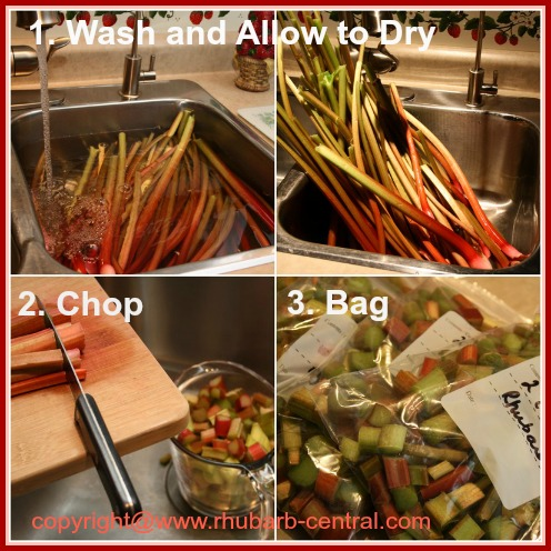 Picture Collage Shoing How to Freeze Rhubarb Without Sugar Added