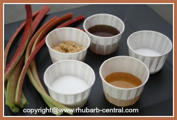 Raw Rhubarb Dipped in Sugar Honey Salt