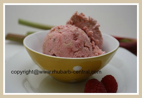Rhubarb Raspberry Cookie Crumble Ice Cream Recipe to Make