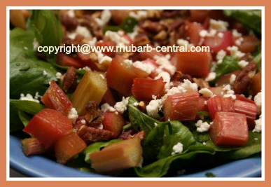 Rhubarb Salad Recipe