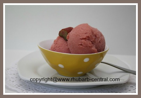 Homemade Rhubarb Sorbet/Sherbet Recipes