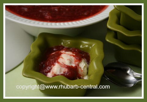 Rhubarb Topping on Ice Cream
