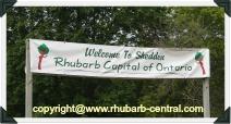 Shedden Ontario Canada Rhubarb Capital