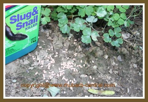 Slub and Snail Killer Bait