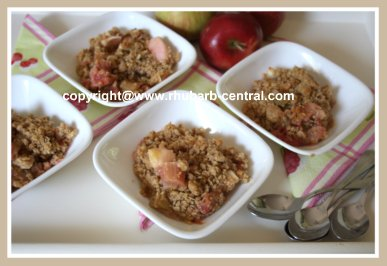 Apples and Rhubarb Dessert Crumble Recipe with Oatmeal Topping