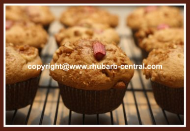 Apple Rhubarb Muffins