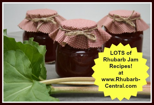 Rhubarb Jam Recipes including Jelly, Cooked and Freezer Rhubarb Jam Preserves