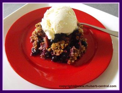 Blueberry Rhubarb Crumble Dessert Idea