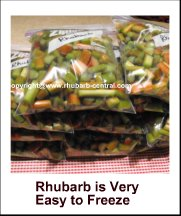 Picture of Freezing Rhubarb