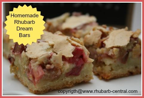 Homemade Rhubarb Bars - Baked Dessert Squares