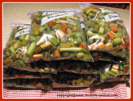 Bags of Frozen Rhubarb h- How to Freeze Rhubarb