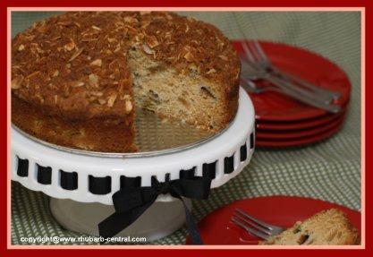Rhubarb Coffee Cake Streusel Rhubarb Cake