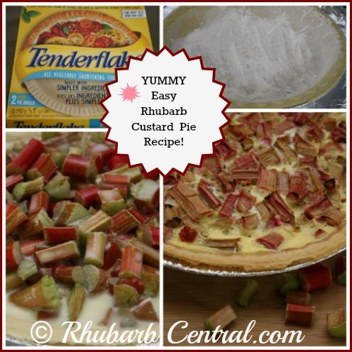 Making a Rhubarb Custard Pie at Home