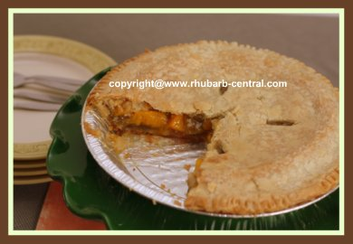 Very Easy Rhubarb Pie Recipe