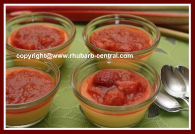 Ice Cream Sauce/Rhubarb Sauce for Ice Cream Pudding Cake and More