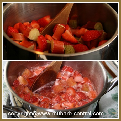 Cooking a Rhubarb Strawberry Recipe