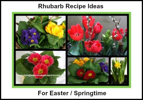 Rhubarb Recipe Ideas for Easter / Springtime