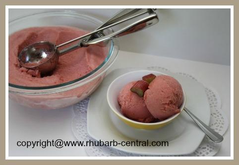 Homemade Rhubarb Sorbet Dessert
