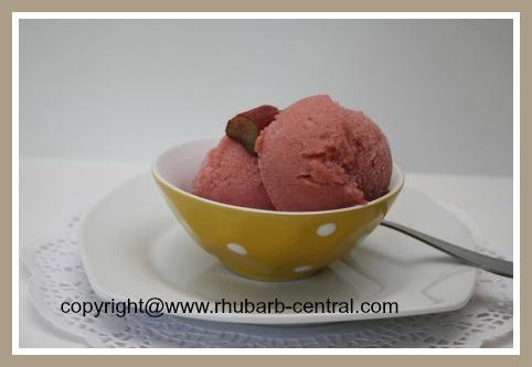 Homemade Rhubarb Sorbet Recipe