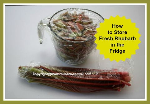 How to Store Keep Fresh Rhubarb in the Refrigertor