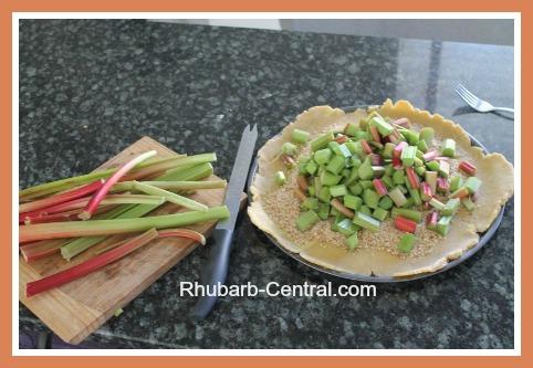How to Make a Rhubarb Tart like an Open Faced Rhubarb Pie