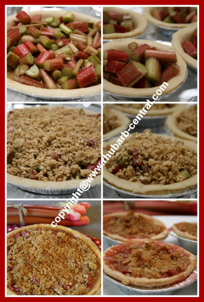 Recipe for How to Make Rhubarb Crumble Pie and Tarts or Mini Pies