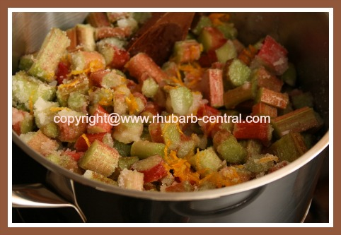 Making Fresh Rhubarb Freezer Jam
