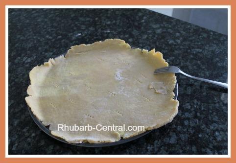 Making a Single Pie Pastry Crust Rhubarb Tart Recipe