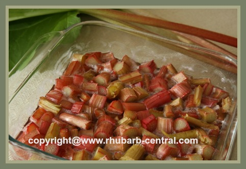 Oven Baked Rhubarb Sauce
