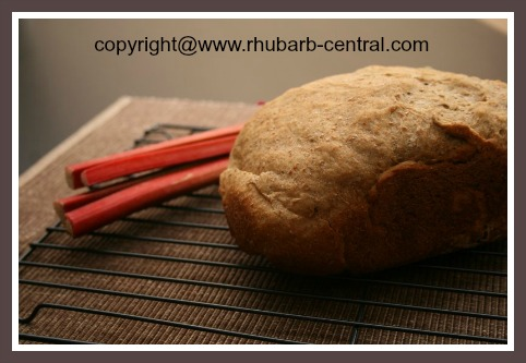 Recipe to Make Rhubarb Bread in Bread Maker Machine