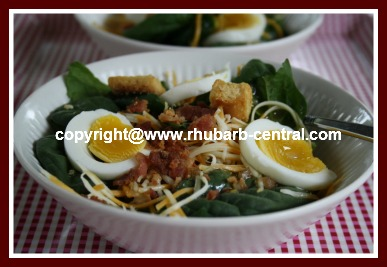 Picture of Spinach Salad with Homemade Rhubarb Dressing